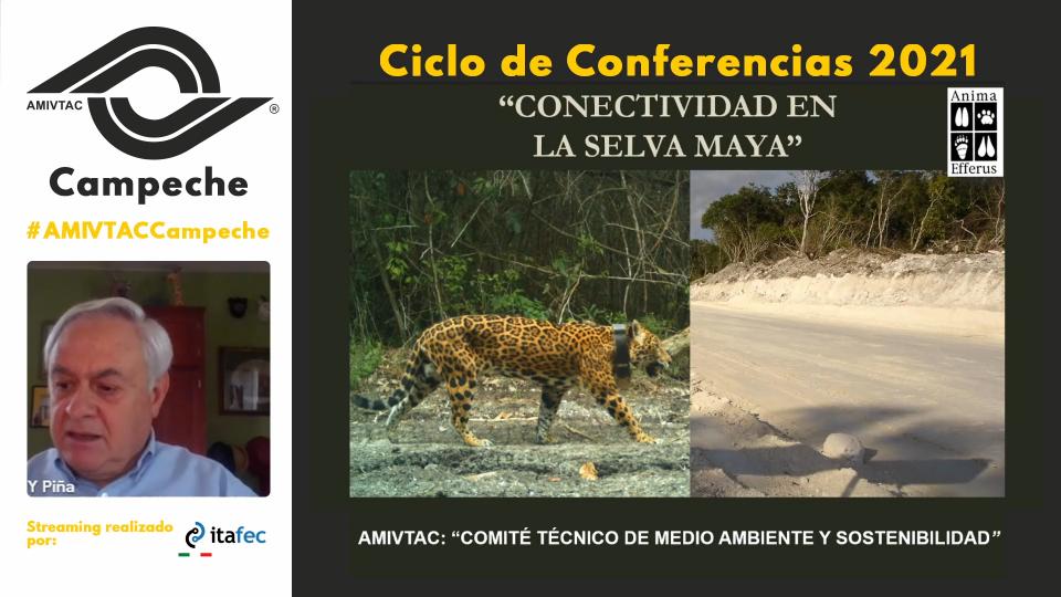 Conectividad en la Selva Maya