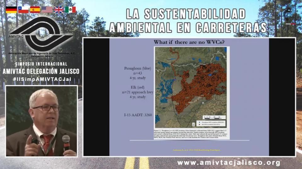 Medidas de mitigación en carreteras para la fauna silvestre y su efectividad