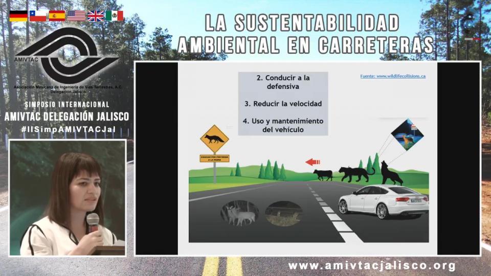 Señalamiento ambiental en carreteras, medida para evitar accidentes entre vehículos y fauna silvestre
