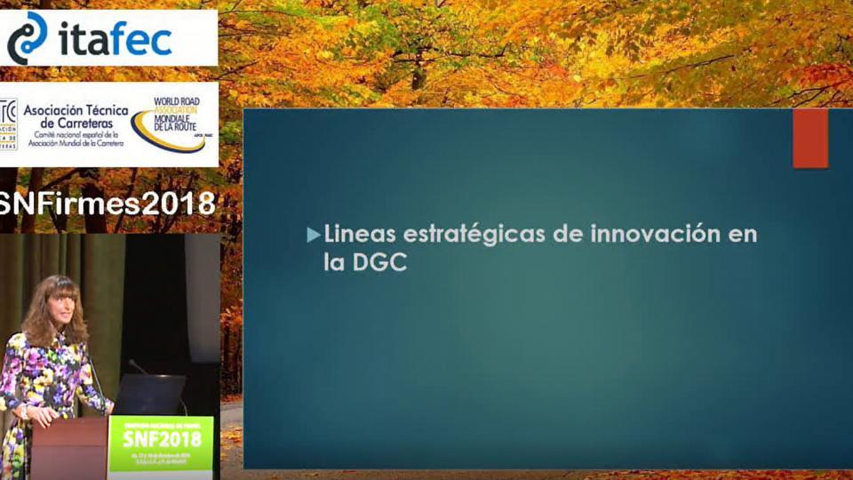 Líneas estratégicas de la Dirección General de Carreteras en materia de innovación Tecnológica
